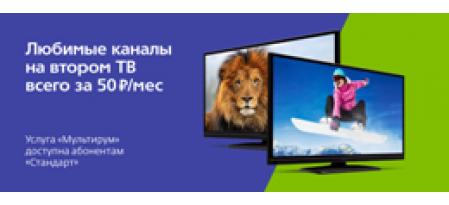 УСЛУГА МУЛЬТИРУМ от Телекарта ТВ